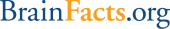 gallery/brainfacts_logo